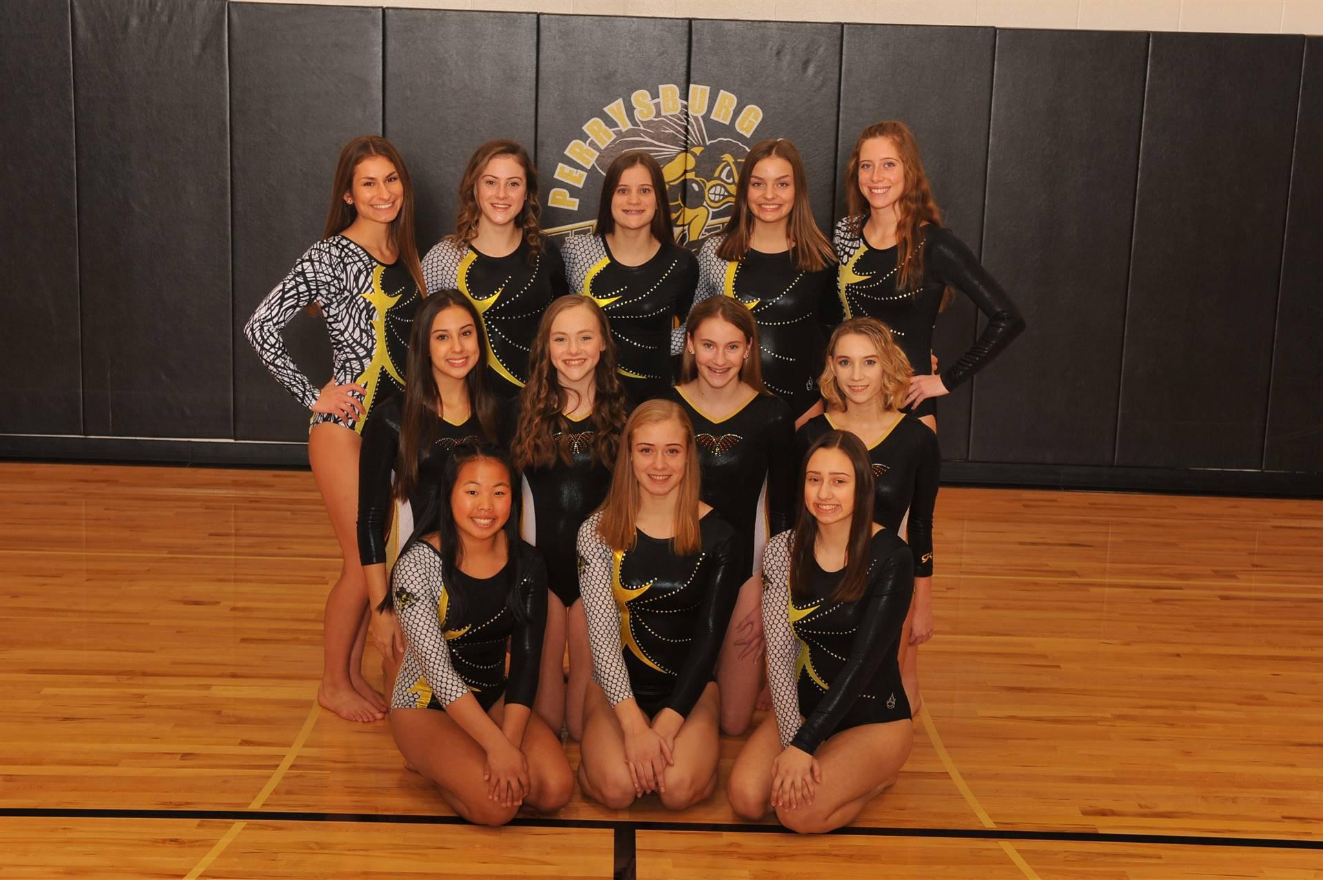 PHS Gymnastics Team Photo