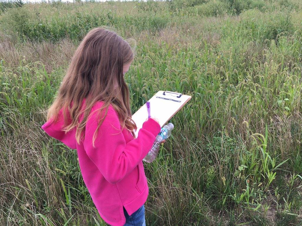 STEM in Action (Prairie Study)